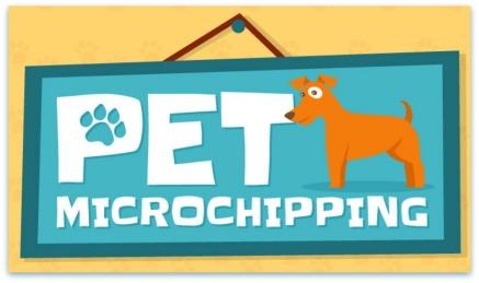 Pet_microchipping_crop edit